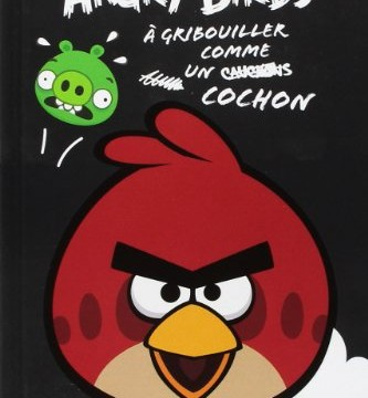 Carnet de notes – Angry Birds -160 pages