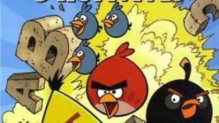 Angry Birds : Livre d'activités