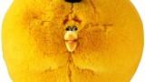 Bubbles (l'oiseau Orange) – Orange Globe d'Angry Bird – 30 cm- Peluche