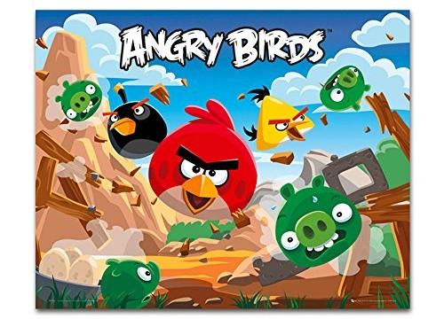 Tableau imprimé 40x50cm Angry bird – 50 x40