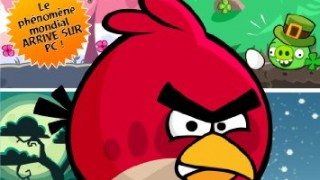 (Windows 7 / XP / Vista) Angry Birds : Seasons (les saisons)