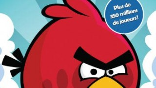 (Windows 7 / XP / Vista) PC Angry Birds
